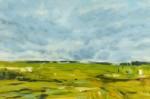 """""""Patterned Fields"""""""
