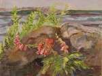 """Foxglove and Rocks"""