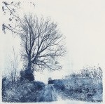 """Farm Road"""