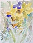 """""""Yellow Daffodil 9″"""