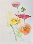 """Ranunculus Bouquet 6″"