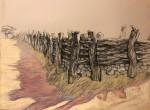 """Mesquite Fence Corner"""